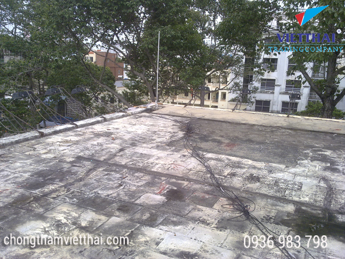 Nấm mốc xuất hiện khu vực sàn mái sân thượng bị thấm