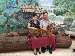 Cặp khách hàng cho hổ con ăn tại trại hổ