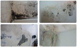 Giữ gìn vẻ đẹp cho công trình nhờ sơn chống thấm tường trong nhà